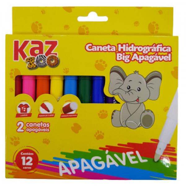 CANETA HIDROGRAFICA APAGAVEL C/12 KZ116